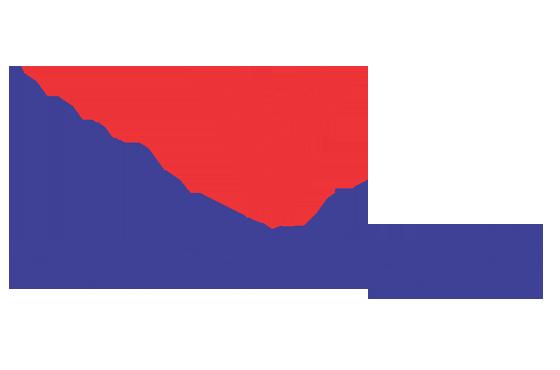 Công ty CP Lưới Thái Việt